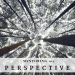 Mentoring 101 - Perspective