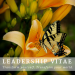 Welcome to Leadership VITAE!