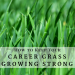 How to Keep Your Career Grass Growing Strong